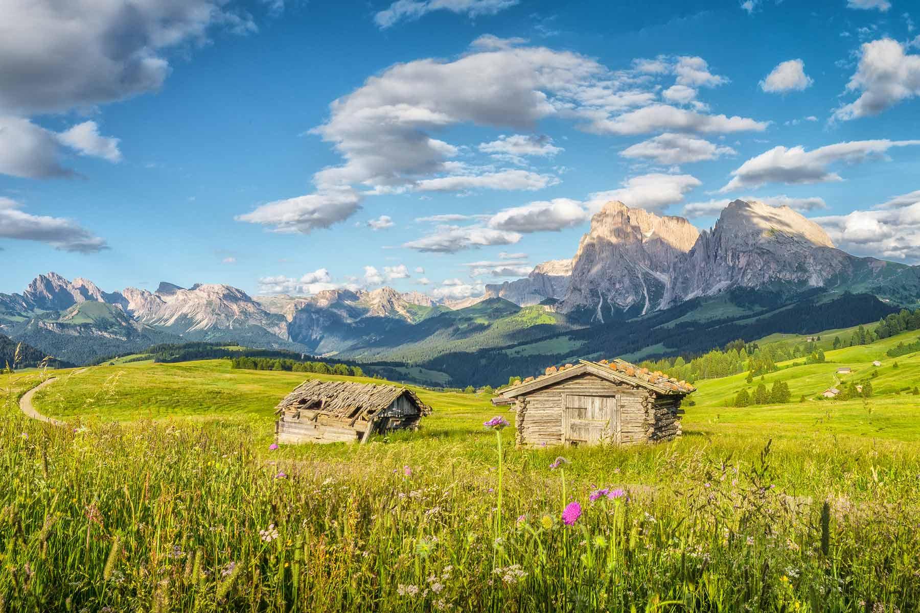 Willkommen auf unserer neuen HomepageAlles neu bei der Süd-Tiroler Freiheit